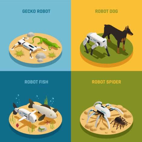 Esempi di animali robot.