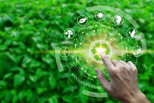 Cos'è la produttività di un ecosistema?