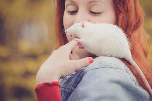 Ragazza con il suo topo domestico.