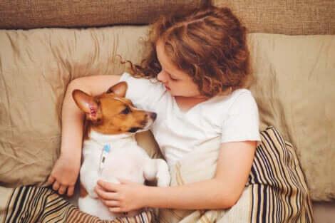 Bambina che misura la temperatura al cane.