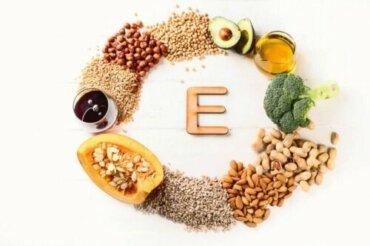L'importanza della vitamina E per cani e gatti