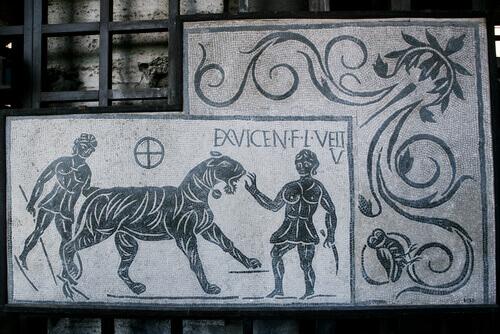 Animali nell'antica Roma: guerre e sacrifici