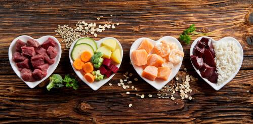 Valore biologico delle proteine per cani. Ciotole con cibo per cani. Carne, verdure, pesce, fegato, riso.