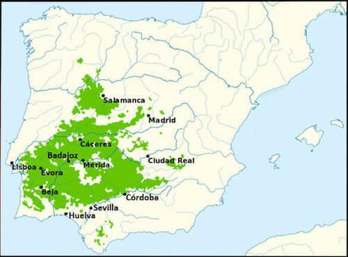 Mappa dei territori della dehesa in Spagna.