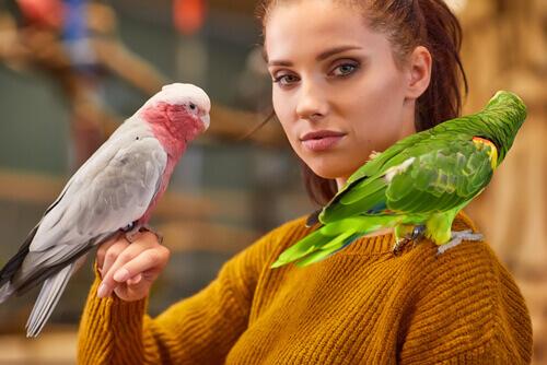 Ragazza con due pappagalli.