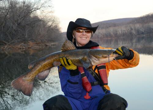 Pescatrice che ha pescato un pesce gatto a testa piatta.
