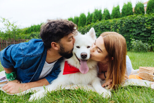 Cane insieme alla sua famiglia.