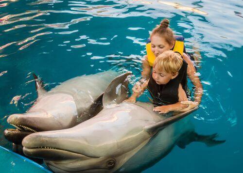 Pet therapy, bambini con delfini.