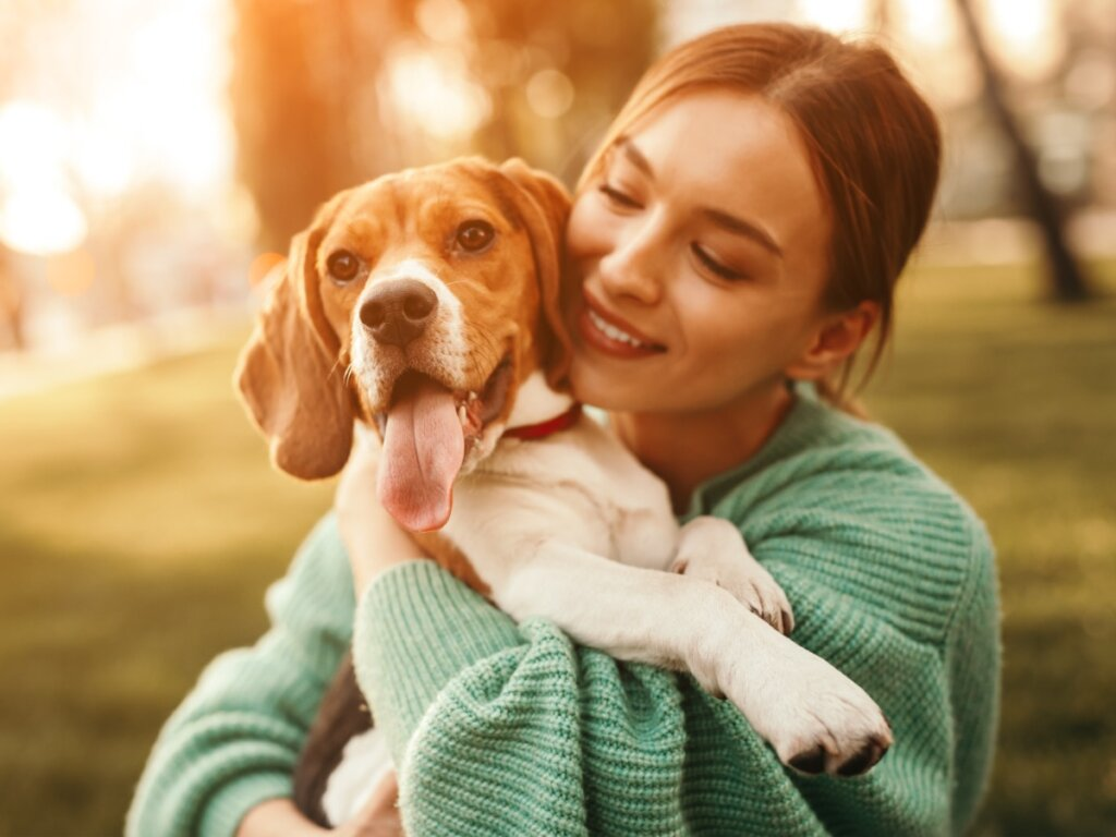 12 domande e risposte sulla cura del cane