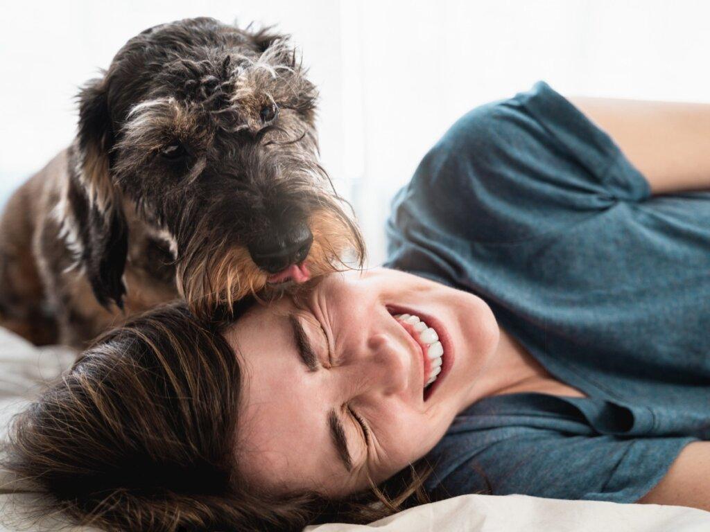 Le 11 razze di cani più affettuose