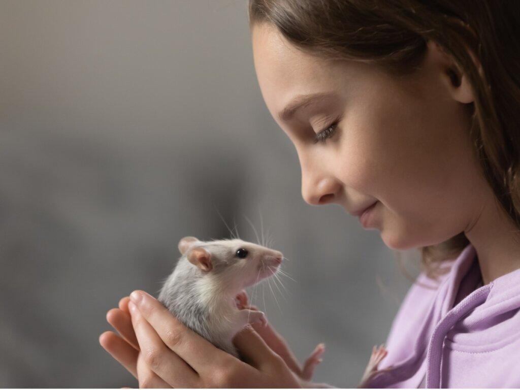 9 tipi di topi domestici